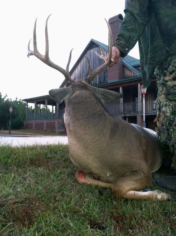 succesful-deer-hunting