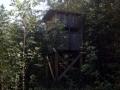 hidden-deerstand-gumlog-hunting