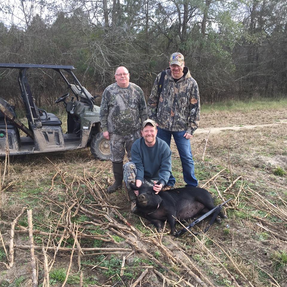 Black Wild Hog