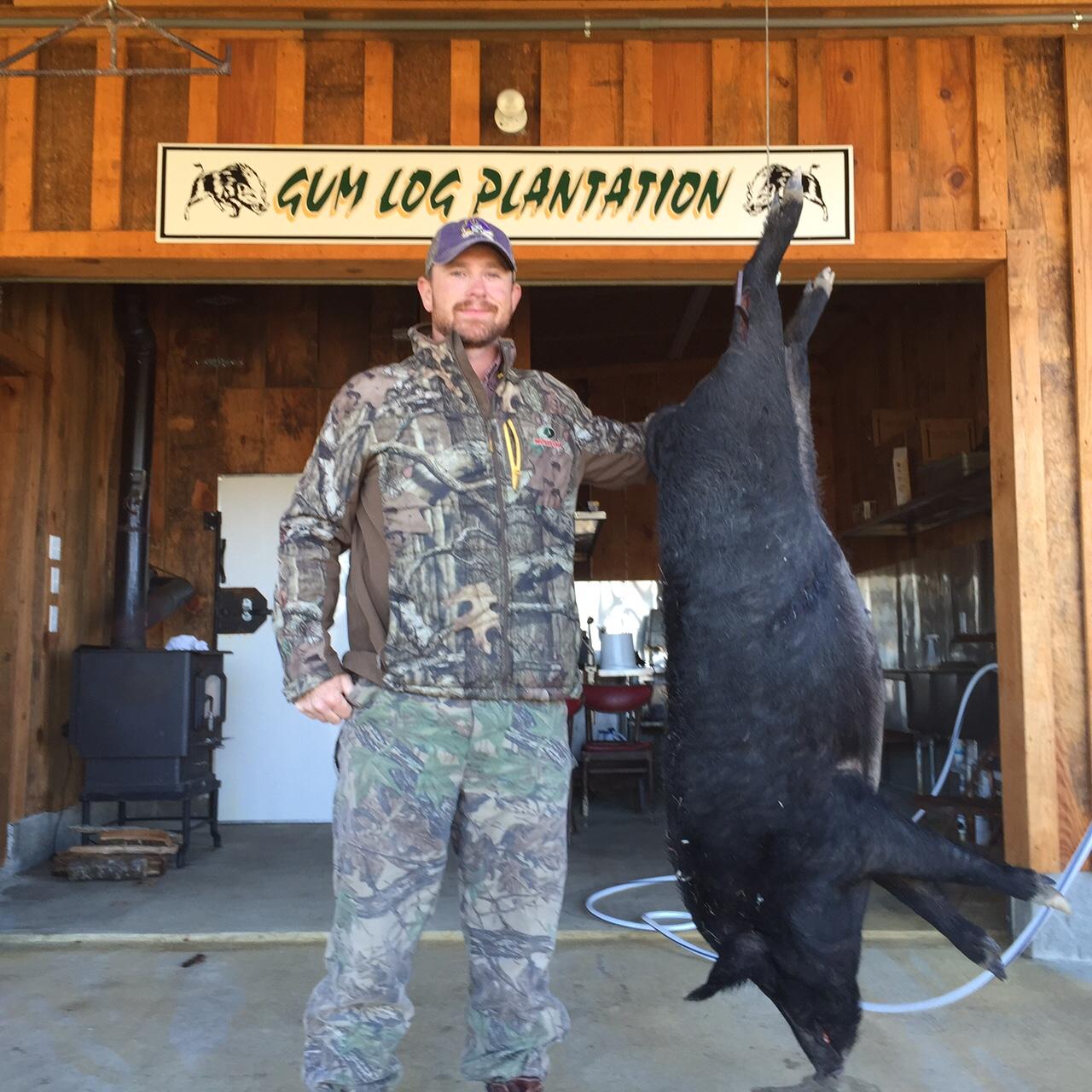 Large Hog