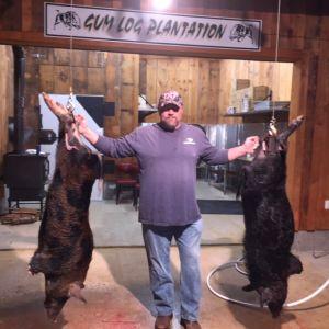 More Hogs