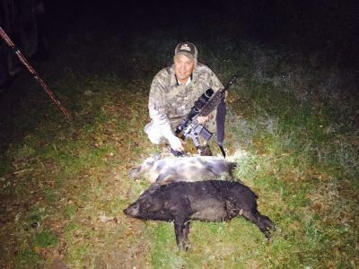 Night Hunt 2 Hogs
