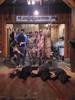 Six Wild Hogs