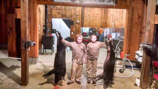 Wild Hog Kills