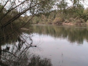 Try fishing in the Ocmulgee OR Aspen Lake